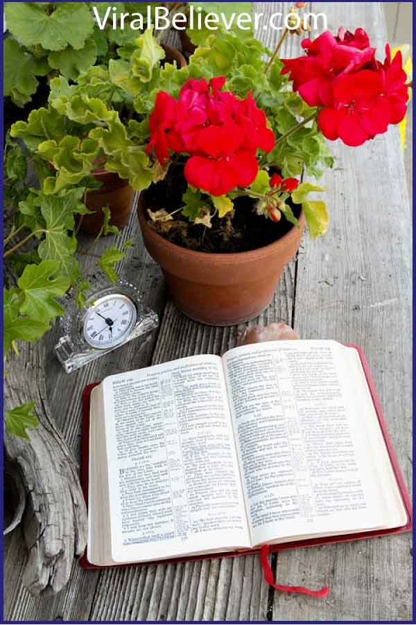 bible verses about life featured image