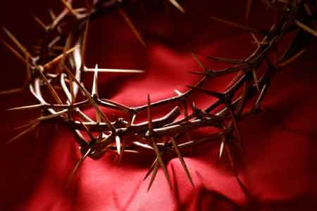 image of the bloody crown of thorns